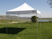 Tent, 10' x 10'  Pop-Up Canopy