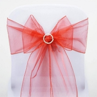 Sash, Organza Burned Orange 6''x108''